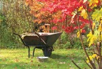 Zahradnický víkend v Parku studií a reflexe Pravíkov